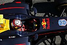GP2 Barcelona GP2: Gasly heads Lynn in season-opening practice