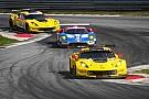IMSA Corvette scores 1-2 as Ferrari falters