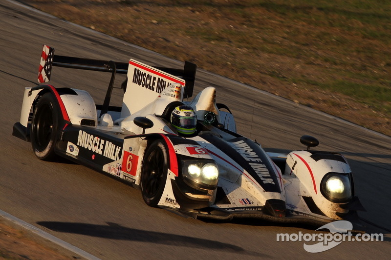 Muscle Milk Pickett Racing Sebring race report
