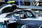 Formel 1 in Spa: Nico Rosberg mit Bestzeit im ersten Freien Training