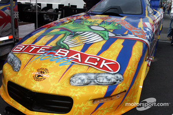 Nitro Fish paint job by Chuck's Brushworks