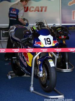 Renegade Ducati
