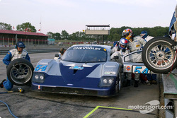 Pitstop for #54 Bell Motorsports Chevrolet Doran: Terry Borcheller, Didier Theys