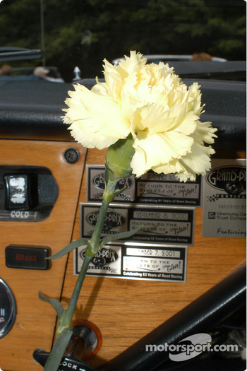 Carnations for the drivers