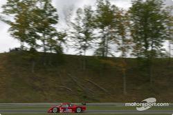 #27 Doran Lista Racing Toyota Doran: Fredy Lienhard, Didier Theys, Bill Auberlen