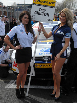 Tom Chilton's Grid Girls