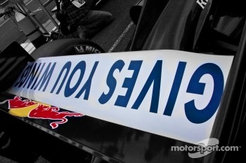 Rear Wing of Jean-Eric Vergne's car