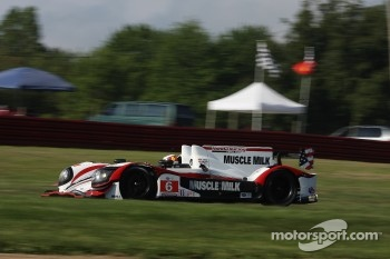 #6 Muscle Milk Pickett Racing HPD ARX-03a Honda: Lucas Luhr, Klaus Graf