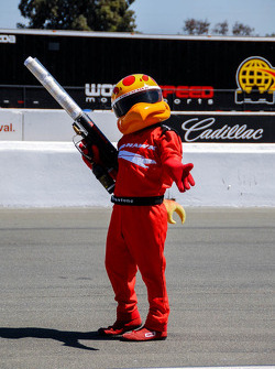 Hawk, the Firestone Tires Mascot