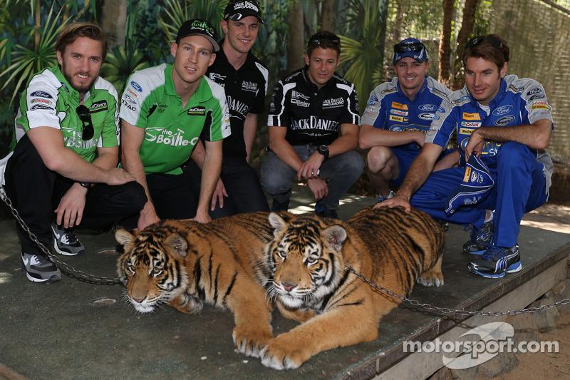 Nick Heidfeld, David Reynolds, Tim Blanchard, Marco Andretti, Mark Winterbottom, Will Power visit tigers at Dreamworld