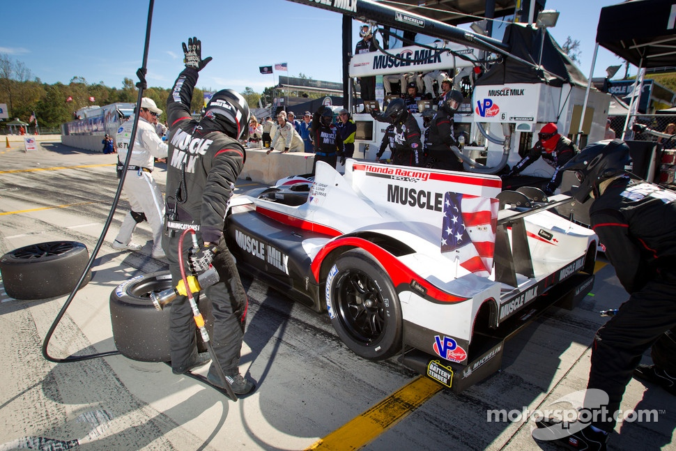 Pit stop for #6 Muscle Milk Pickett Racing HPD ARX-03a Honda: Lucas Luhr, Klaus Graf, Romain Dumas