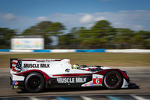 #6 Muscle Milk Pickett Racing HPD ARX-03c Honda: Lucas Luhr, Klaus Graf