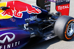 Antonio Felix da Costa, Red Bull Racing RB9 Test Driver exhaust detail