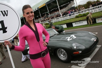 The Goodwood grid girls