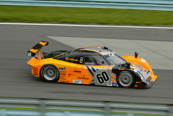 #60 Michael Shank Racing Lexus Riley: Oswaldo Negri, Mark Patterson