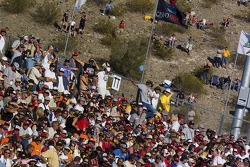 Phoenix fans
