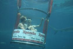 Karl Reindler and Alan van der Merwe at the Ushaka Marine World Shark tank