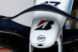 Williams F1 Team, FW29, Nose