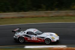 #53 Robertson Racing Panoz Esperante GTLM: David Robertson, Andrea Robertson, Arie Luyendyk Jr.