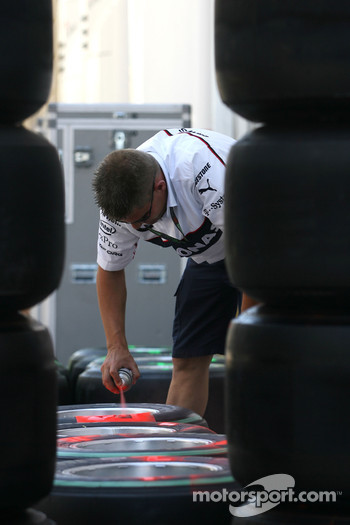BMW Sauber F1 Team mechanic
