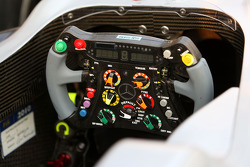 The steerig wheel of Michael Schumacher, Mercedes GP