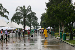 The wet paddock