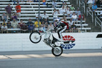Robbie Knievel
