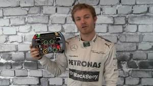 The F1 Steering Wheel