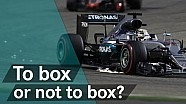 F1 Explained: Assessing car damage live!