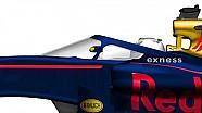 A Red Bull sajátos halós rendszere, vagy semmi