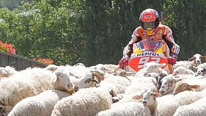 Repsol riders united by a common challenge
