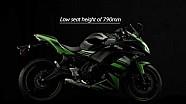 Nueva Kawasaki Ninja 650 MY17