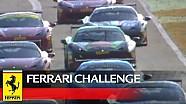 Ferrari Challenge Europe - Jerez 2016 - Trofeo Pirelli - Race 1