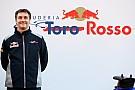 Formula 1 Toro Rosso