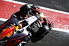 【F1】レッドブル、新車RB13に自信。「本命メルセデスに挑戦できる」