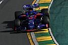 """Vergne: chegada de Hartley à Toro Rosso """"me faz rir"""""""
