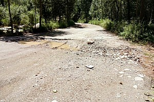 WRC 突发新闻 WRC中国站被取消,2017年见?