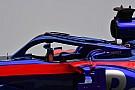 С крыльями и без: какие Halo команды Ф1 привезли на тесты