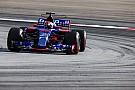Minden baja volt Gaslynak élete első F1-es versenyén