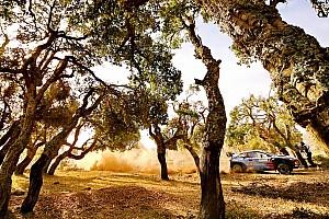 WRC Galería Las 20 fotos más bellas del rally de Cerdeña
