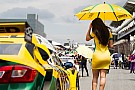 Stock Car Brasil La chicas de la parrilla en el Stock Car