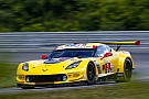 IMSA Lime Rock IMSA: Garcia takes sub-50sec pole for Corvette