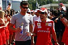 Webber hat Bedenken: Alonsos Mammut-Saison 2018 zu viel?