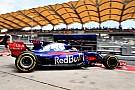 F1初戦のガスリー「今年日本人と仕事するのは、必ず来年の役に立つ」