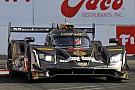 IMSA IMSA Long Beach: Cadillac bezwingt Acura und Nissan