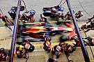 Rosberg ziet Verstappen geen wereldkampioen worden bij Red Bull