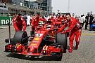 Формула 1 «В лепестке на руле Феттеля нет ничего необычного». Блог Петрова