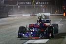 Forma-1 Toro Rosso-Honda: totális öngyilkosság, vagy jön a csoda?
