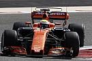 Formula 1 Formula 1'i tanıyalım: Testler