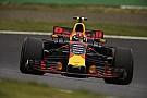 Max Verstappen verlängert Formel-1-Vertrag mit Red Bull